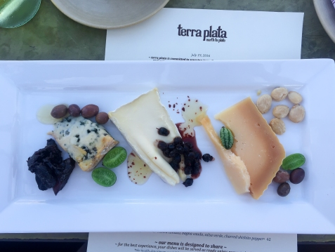 terra plata cheese plate (1 of 1)